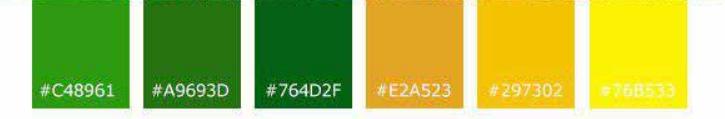 رنگ بندی سبز برای طراحی سایت